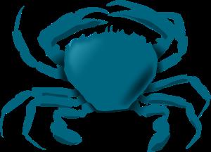 free-vector-annaleeblysse-blue-crab-clip-art_106482_Annaleeblysse_Blue_Crab_clip_art_hight